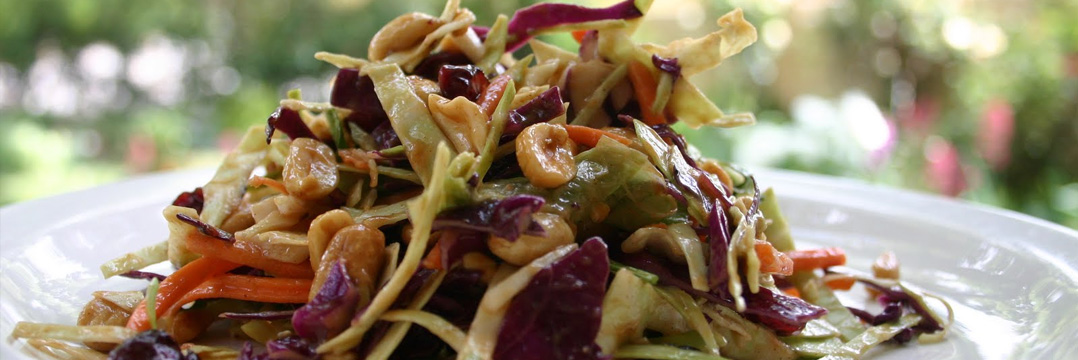 Delicious Healthy Plate of Asian Slaw