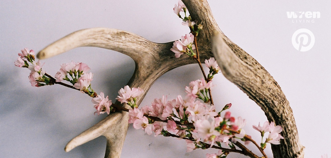 Rustic Wood and Pink Flowers
