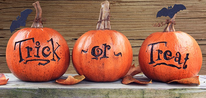 Halloween Pumpkins with Trick or Treat