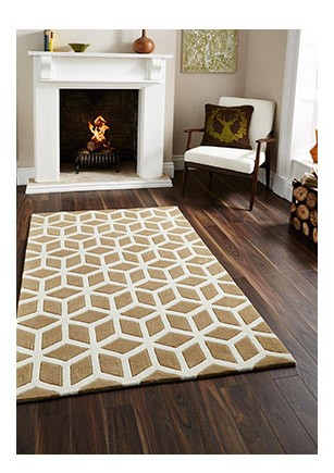 Living Room Rug and Fireplace