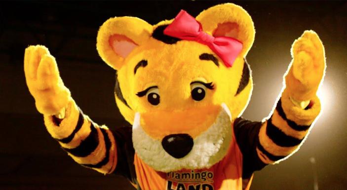 Hull City Mascot