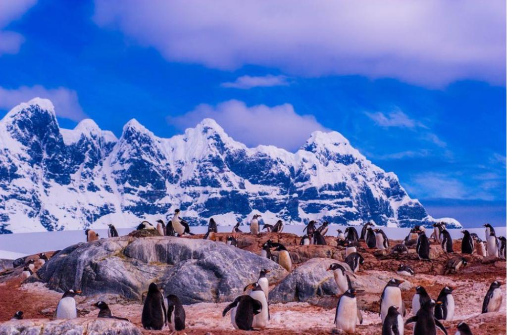 Antarctica (credit Instagram @cohnjared)