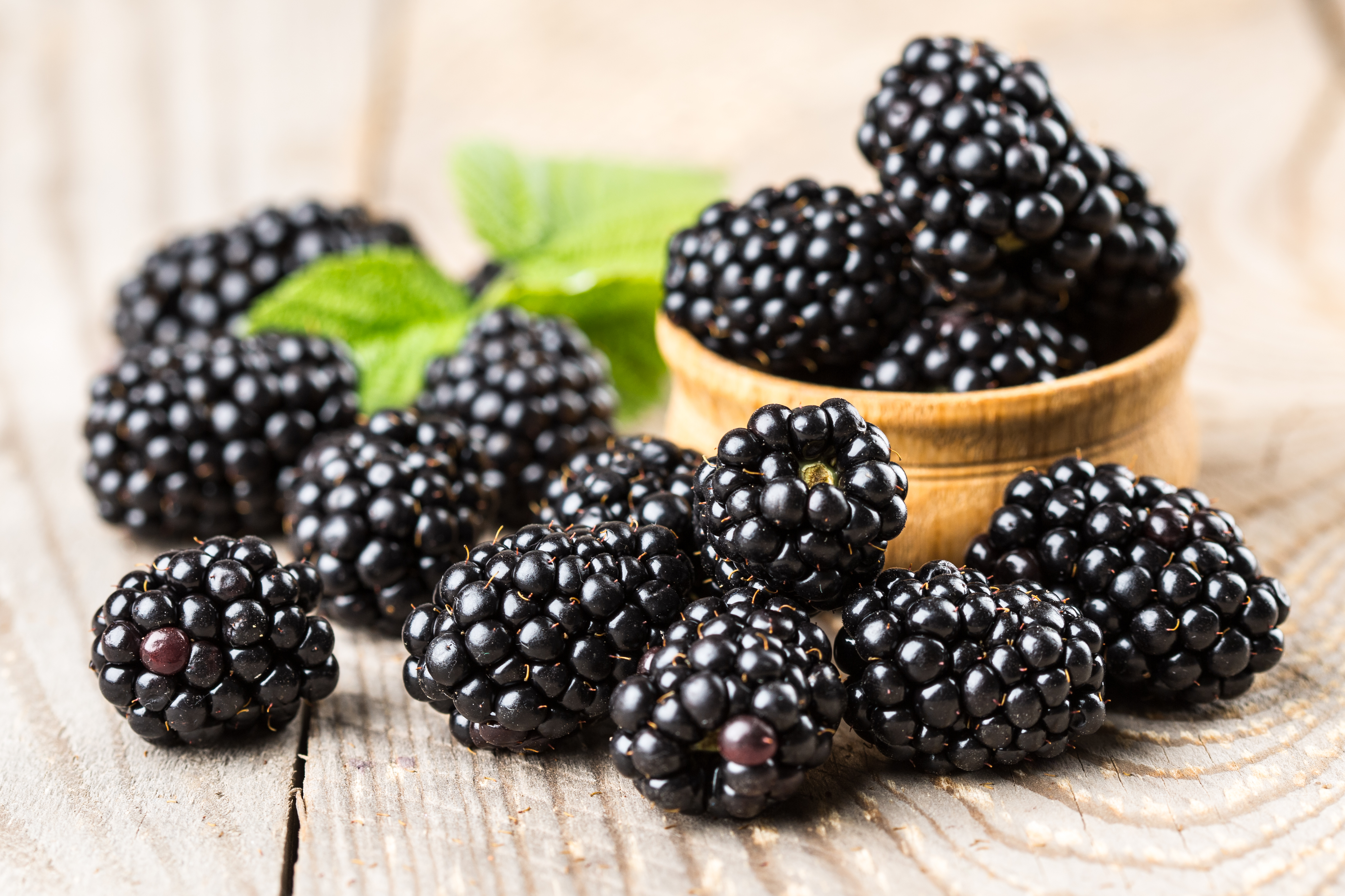 Blackberries & mint